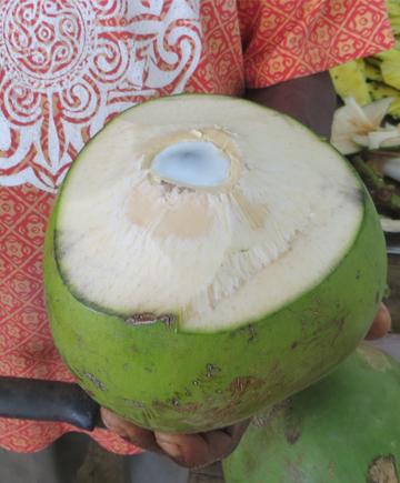 coconut water has story Kokoswasser hat Geschichte